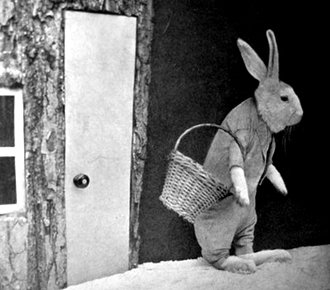 Rabbit in Clothing